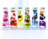 【美プロ】話題のハーバリウム、つくってみた!? 可愛い&キレイをぎゅっと瓶に閉じ込める植物標本のインテリア雑貨【ビューティコラム】