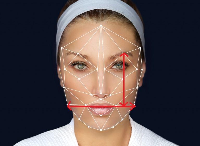 顔の形の比率