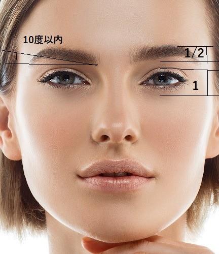 理想の眉毛の太さの目安